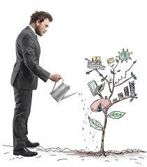 Board plan is one of the useful plans vitally used in the MLM business