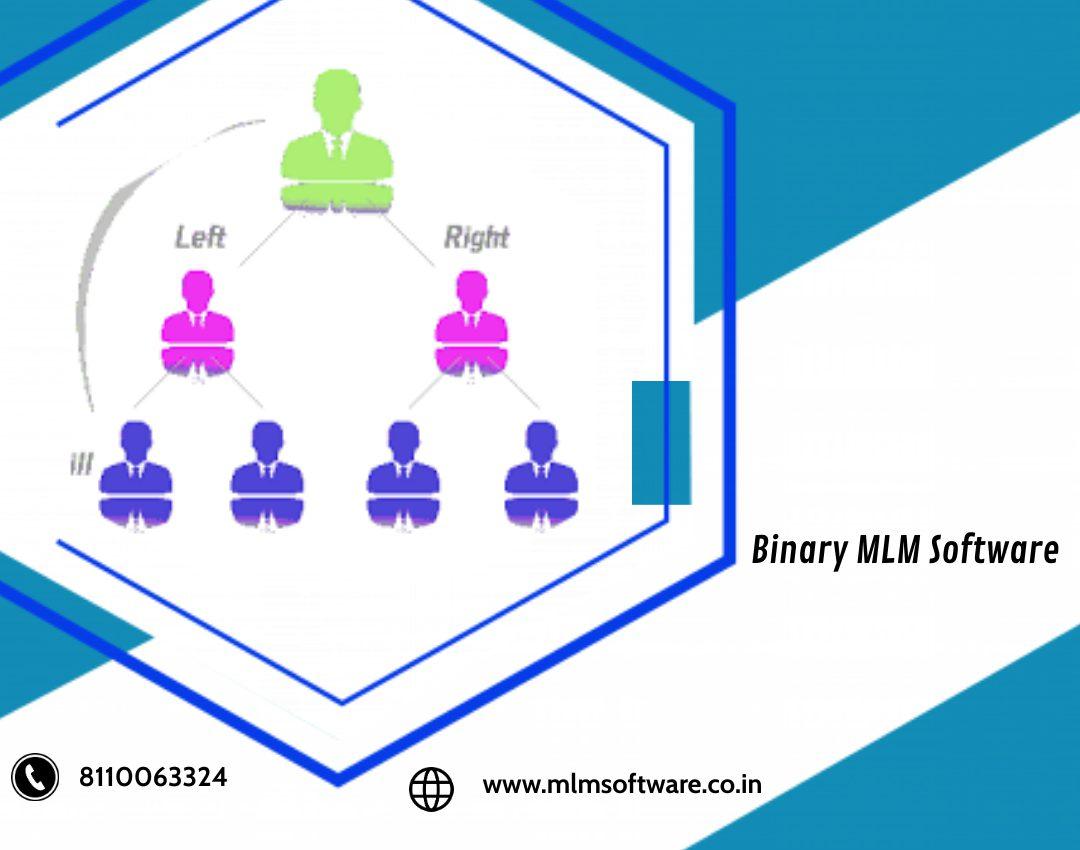 Binary MLM Software